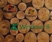 Windows生命