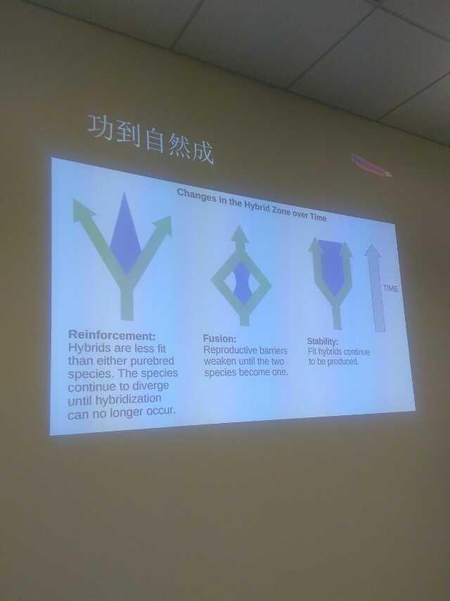 中国开源社区