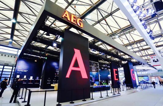 百年品牌AEG