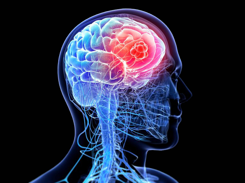 一周AI大事盘点:大脑植入芯片减肥,阿里发布AI语音芯片技术