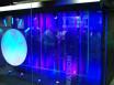 IBM弹性存储