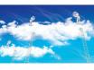 云计算发展期