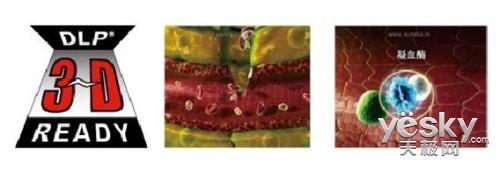 经典商务投影机 夏普XR-E255SA 冰点价促销