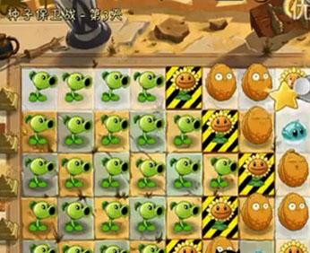 埃及支线种子保卫战3