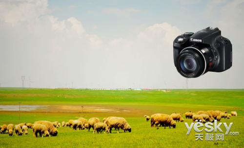 夏末清爽出游,高性价比相机GOGOGO