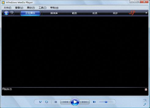 Windows Media Player 10截图2