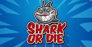 Shark or Die标题图