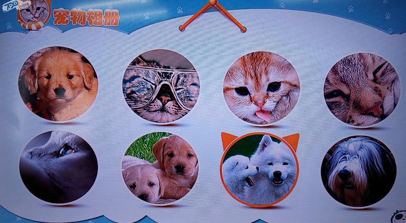 宠物相册截图1