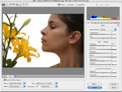 Adobe Camera Raw截图1