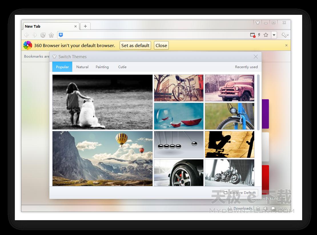 360极速浏览器国际版截图3