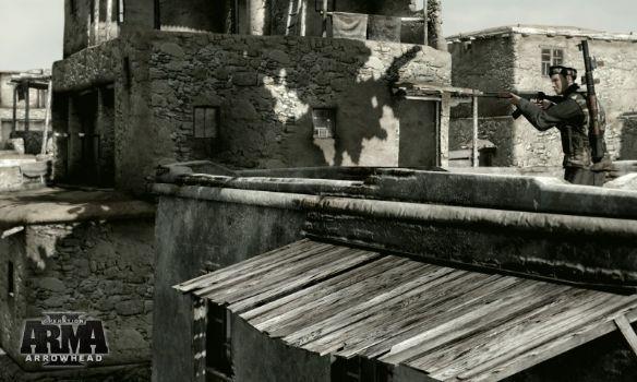 武装突袭2:箭头行动截图4