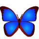 bkViewer标题图