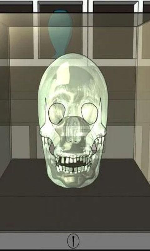 闪闪发光的骷髅头截图2