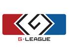 G联赛2015年赛季总决赛