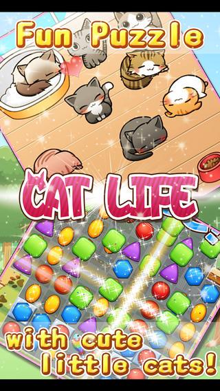 猫的生活截图3
