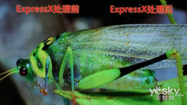 OTT盒子ExpressX图像处理引擎有多牛掰?