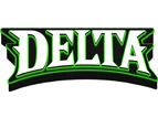 Delta战队