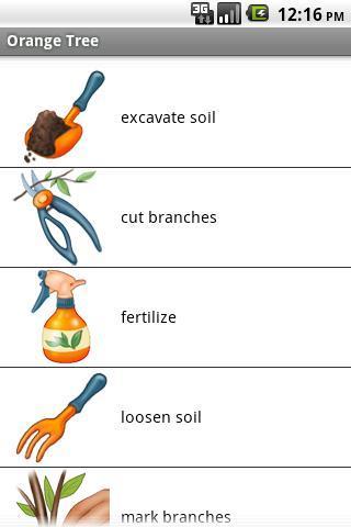 橘子树截图1