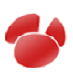 Navicat for Oracle标题图