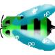 僵尸蜜蜂标题图