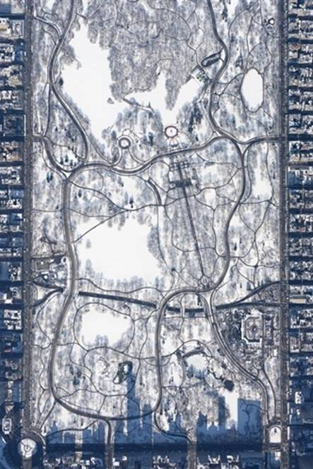 Snowy Central Park at 10,000 feet by Filip Wolak