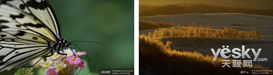 索尼黑卡RX10III与索尼全画幅微单镜头发布