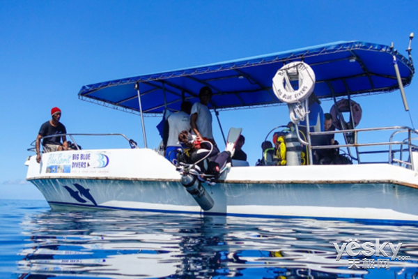 索尼黑卡™RX100V 体验水下摄影的魅力(下)
