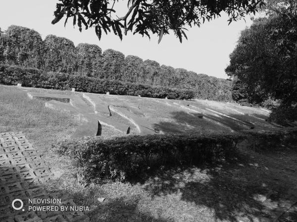 行摄Vol.36 还记得香蜜湖畔的游乐场吗?
