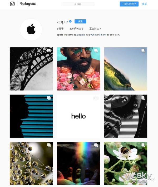 苹果Instagram官方帐户上线:大秀iPhone拍照