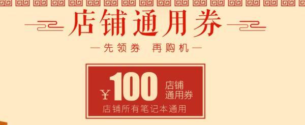 神舟天猫100元店铺通用券 适用所有笔记本型号