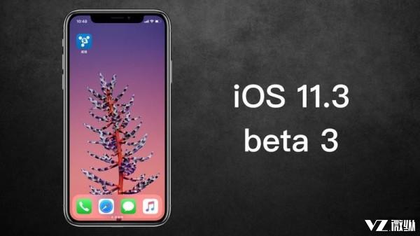 更新iOS11.3的iPhone用户 你们遇到大麻烦了