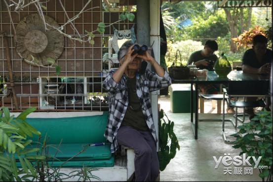全能打鸟神器 索尼黑卡RX10M4泰国之旅(下)