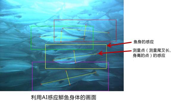 Macintosh HD:Users:zhaolina:Desktop:NEC中国5月第1篇:WechatIMG10.jpeg