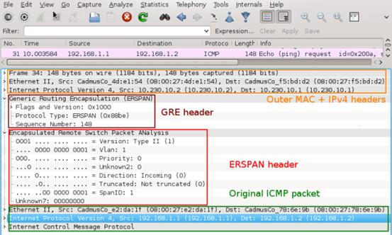 Picture1_Wireshark_Capture