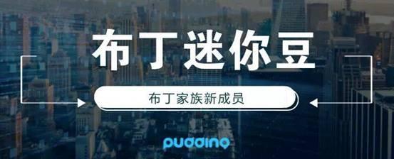 软文/布丁迷你豆产品内测活动/WechatIMG1.jpeg