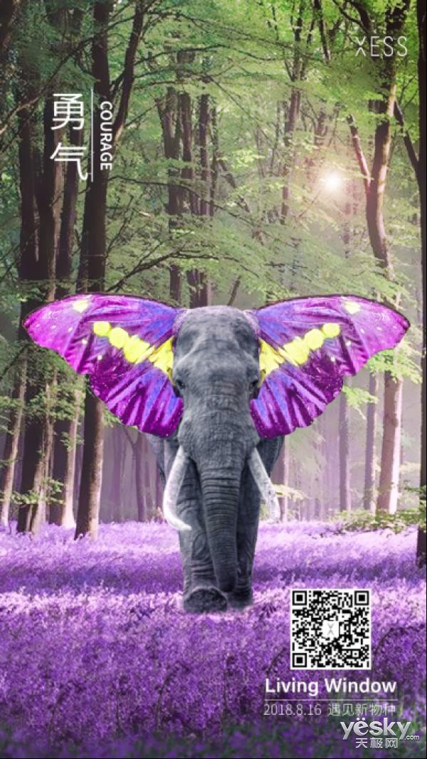 遇见新物种  用勇气和创意突破框架