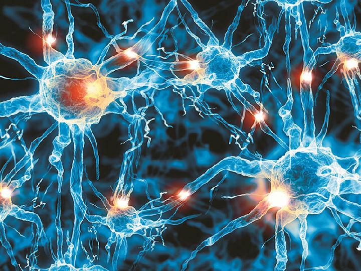 IBM通过机器学习诊断阿尔茨海默症
