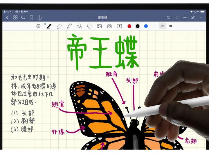 苹果悄然发布iPad Air与iPad mini:售价2999元起