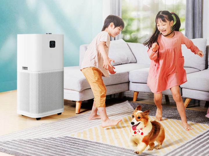 夏季柳絮飞舞易过敏 选对空气净化器呵护敏感体质!