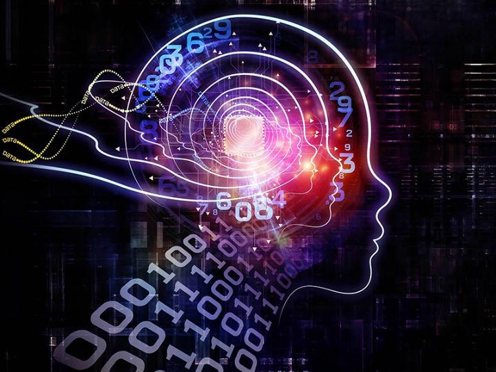一周AI大事盘点:MIT和IBM利用AI探索神经科学,谷歌回应AI争议