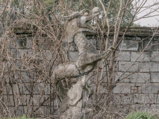 索尼A7RII―城市朝�起落中的巡�Y