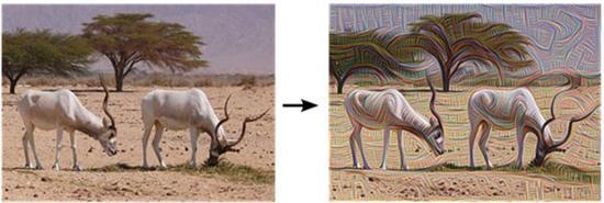 谷歌图像识别网络可制造幻象